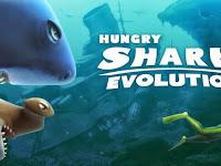 Hungry Shark Evolution Apk v2.2.3