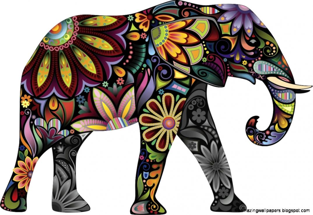 Colorful Elephant Pictures
