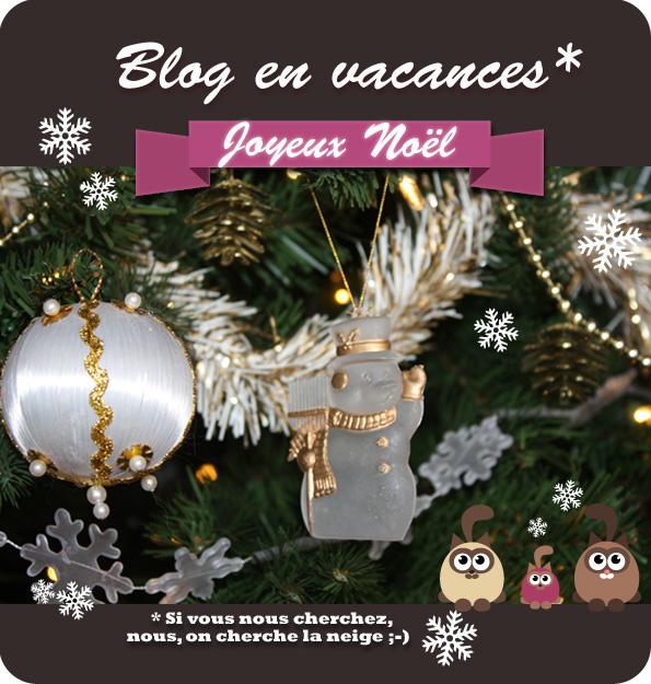 Livres et merveilles : Joyeux Noël 2015