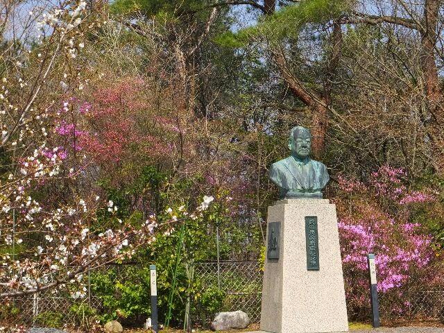 頂上の桜の下で、故・会長の銅像がある。