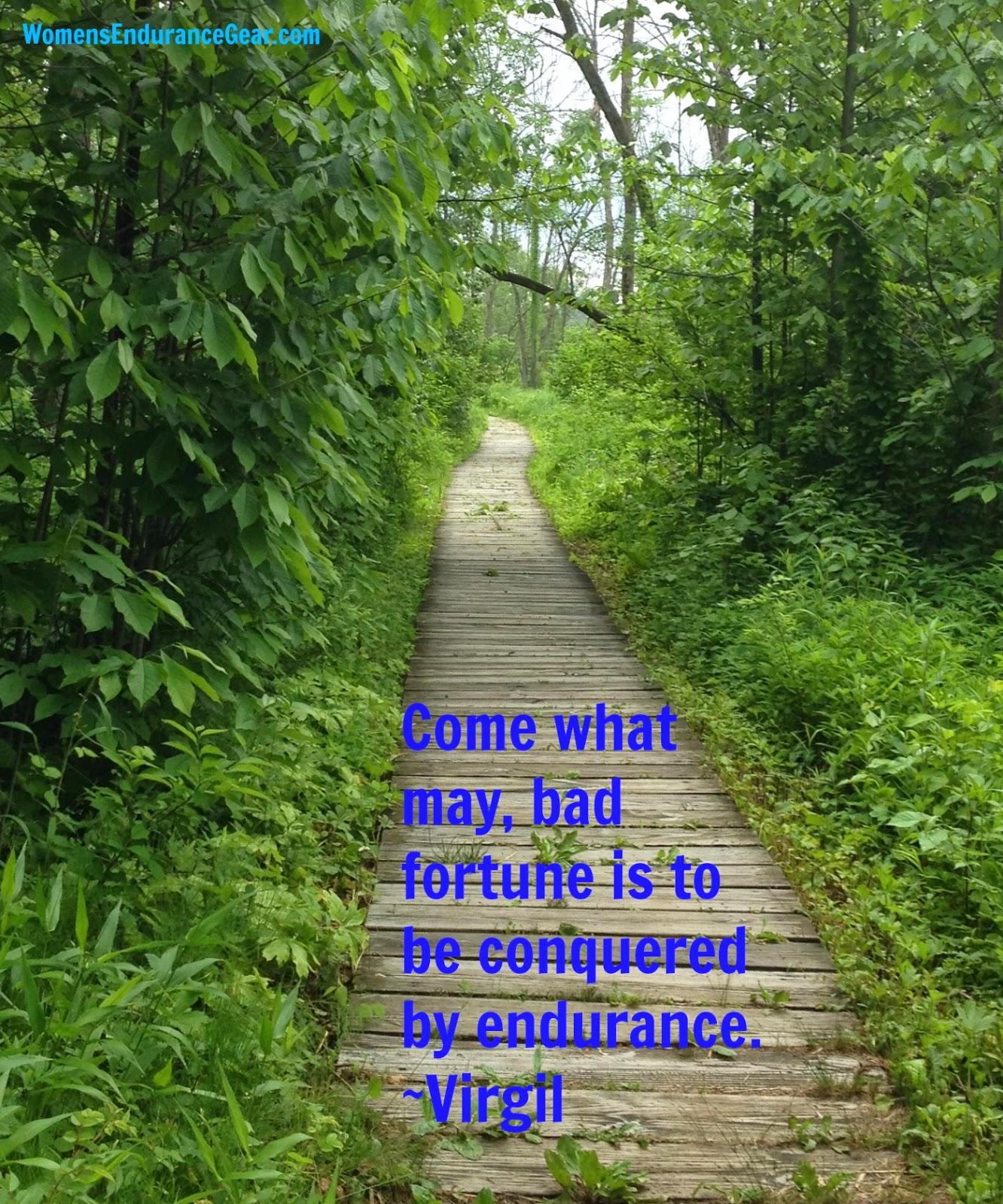 Endurance - Virgil