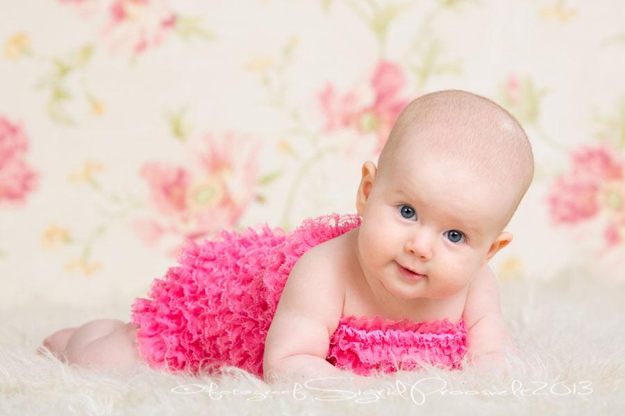 beebi-pildistamine