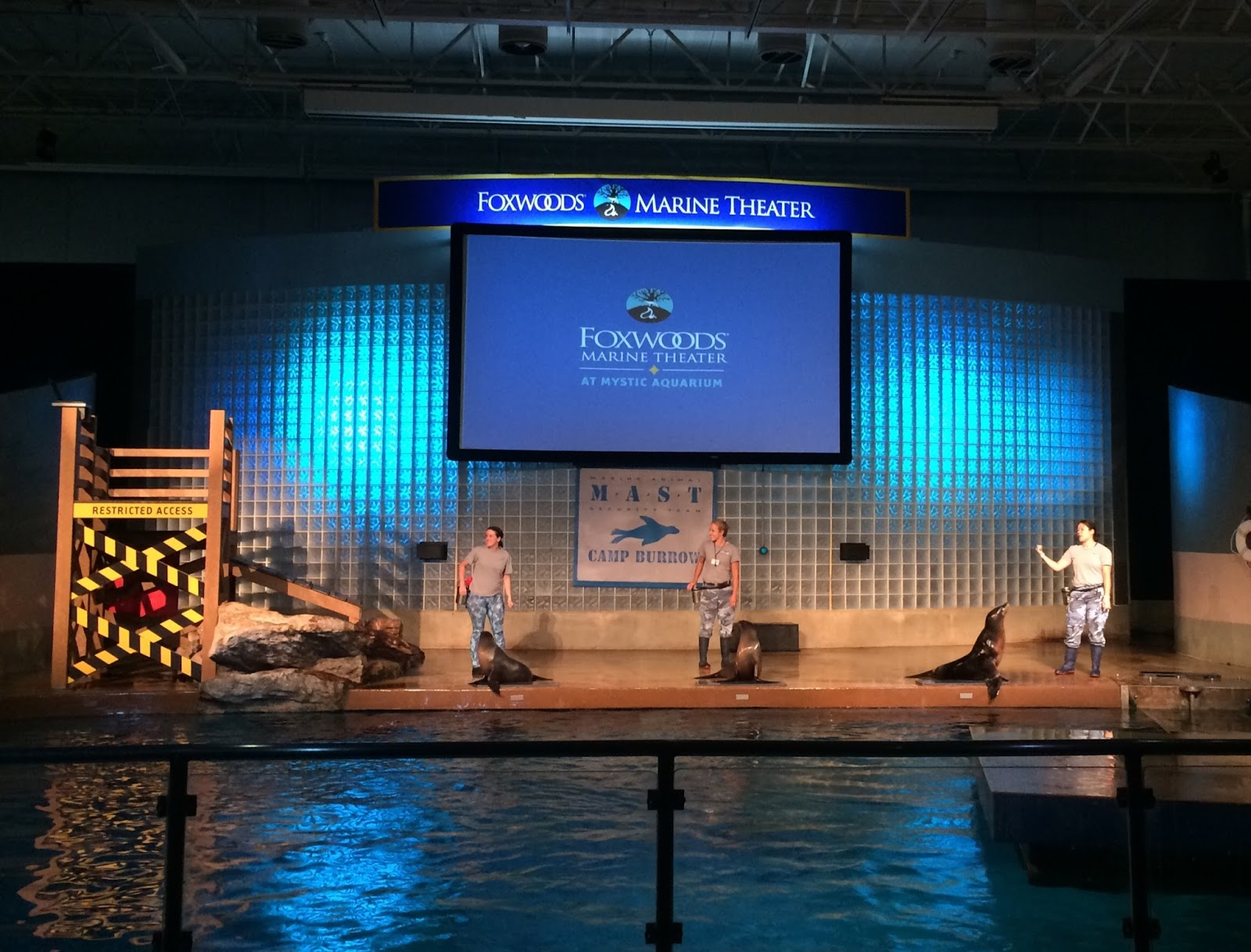 Evan And Lauren 39 S Cool Blog 8 16 15 Mystic Aquarium