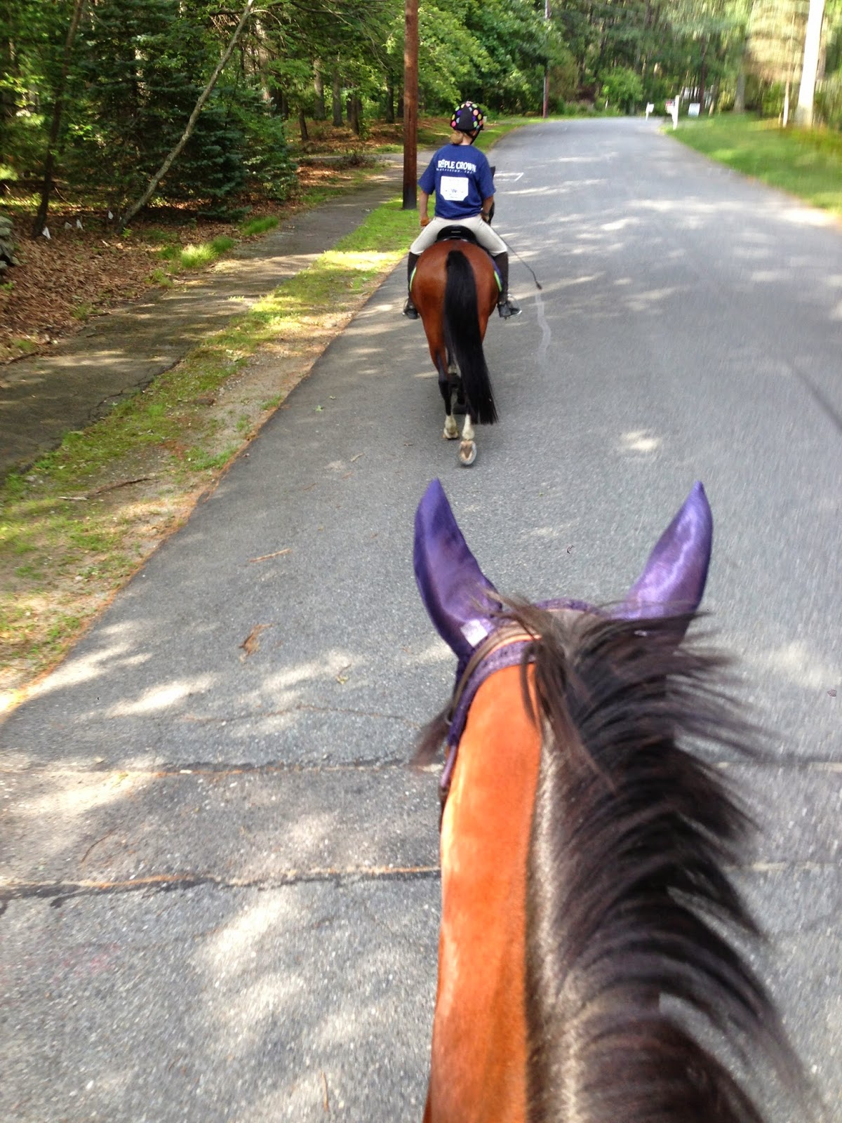 rantings of a horse mom what about me when mom wants a turn to