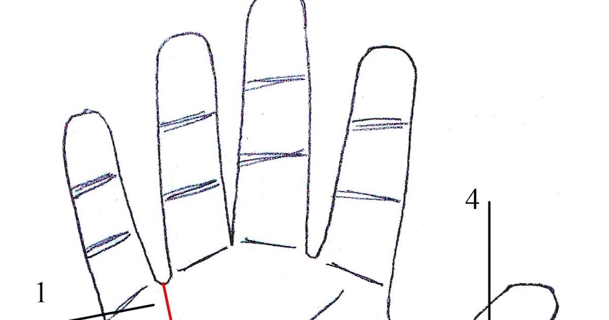 Learn palm reading hindi