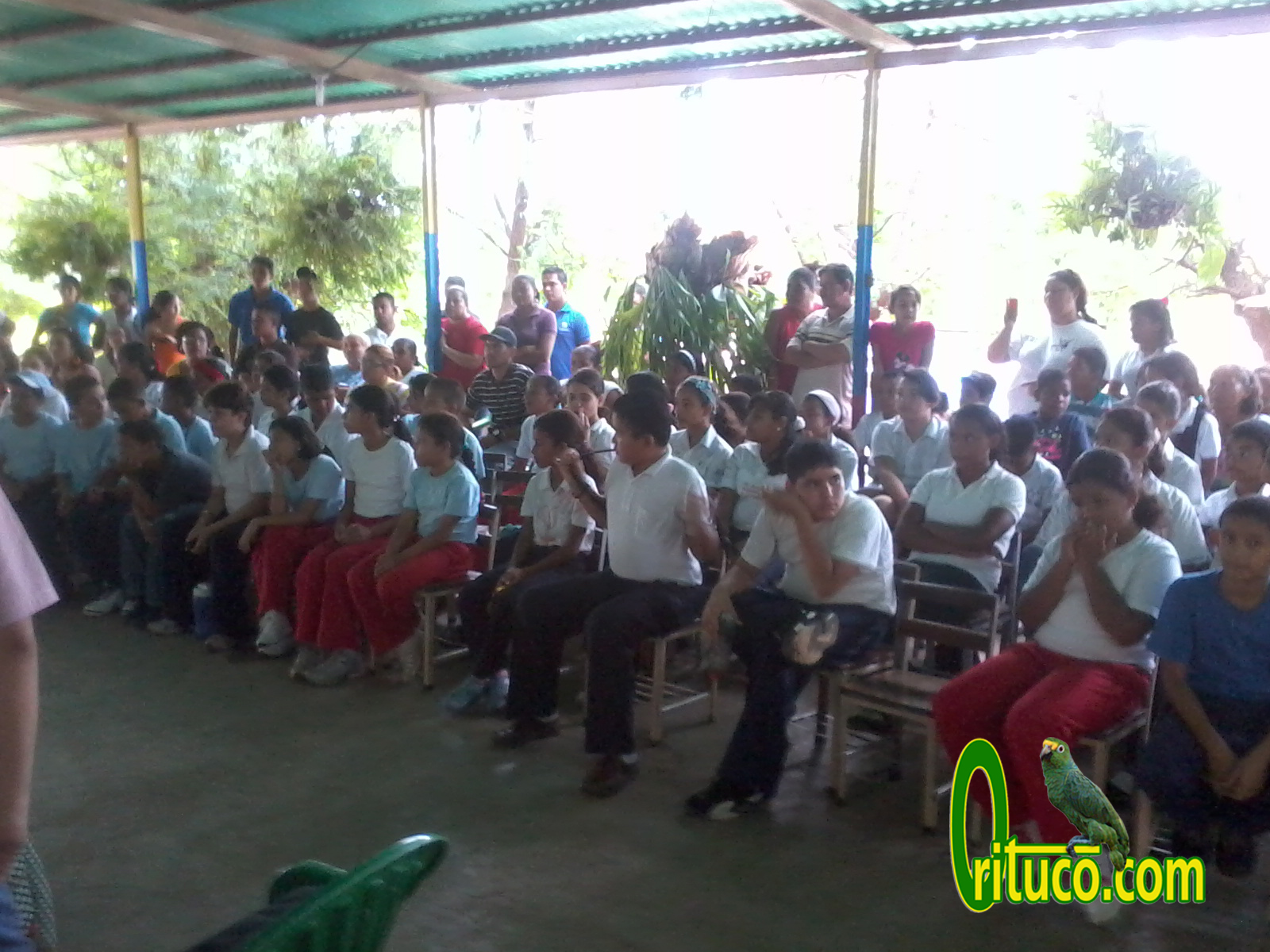 altagracia de orituco milf personals The shooting took place on wednesday in the central town of altagracia de orituco,  dating  venezuelan oppostion politician shot dead at campaign event.