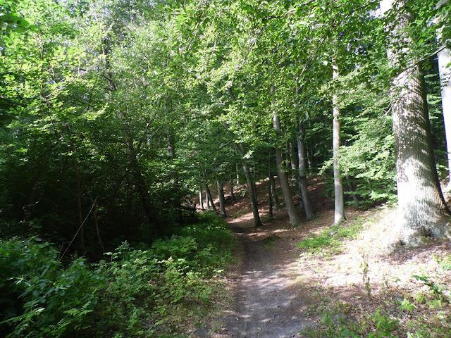 szlak z Mielna do Mielenka