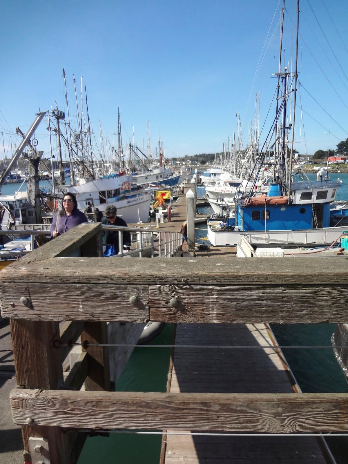 Honeylust destination x hidden gems near san francisco for Half moon bay pier fishing