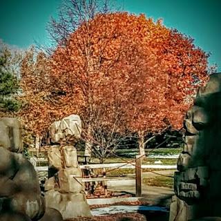 parenting teen blog, orange tree