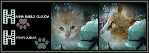Nuestros Gatos: