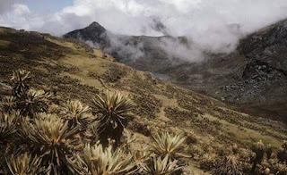Cordillera Oriental de Colombia