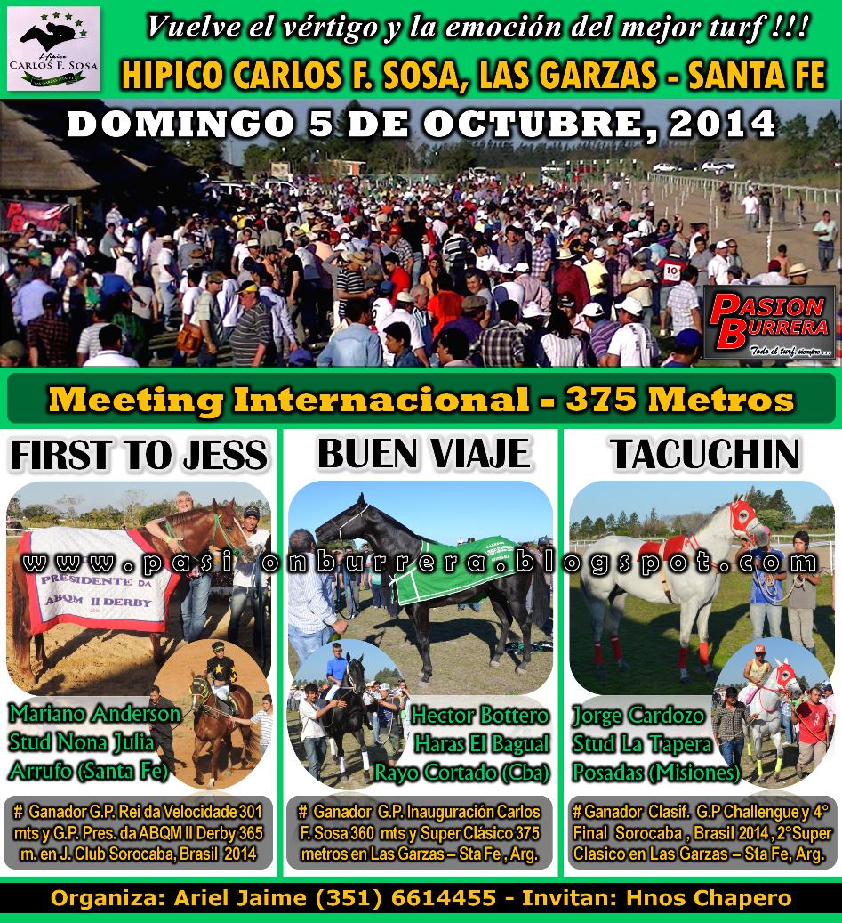 LAS GARZAS - 5-10-14 - 375