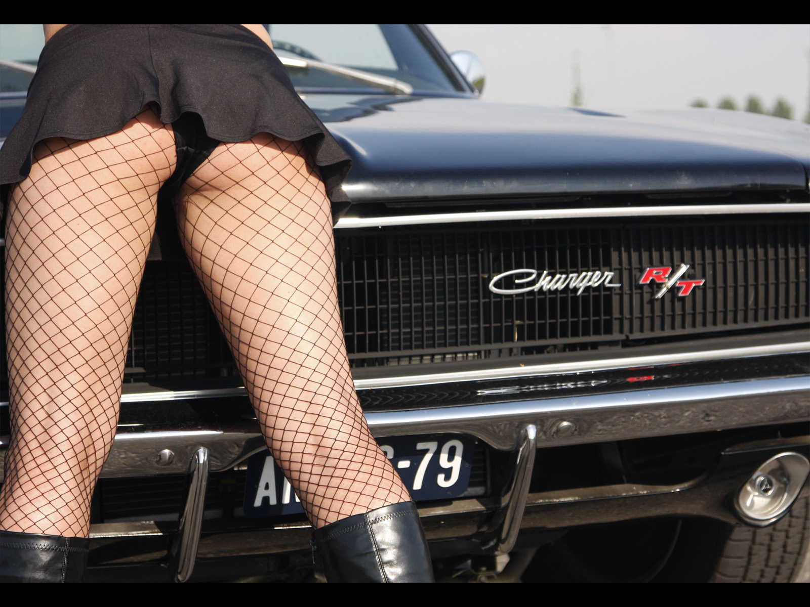 American Auto Ass 61