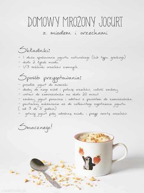 Przepis na domowy mrożony jogurt DIY