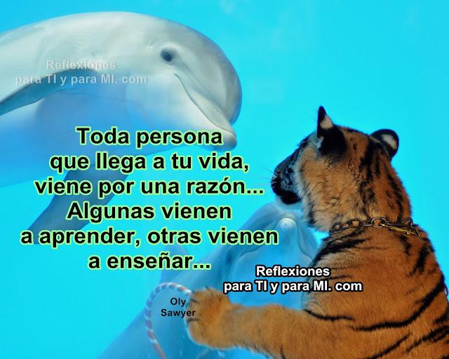 Toda persona que llega a tu vida viene por una razón... Algunas vienen a aprender, otras vienen a enseñar...