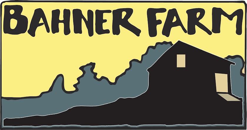 Bahner Farm CSA