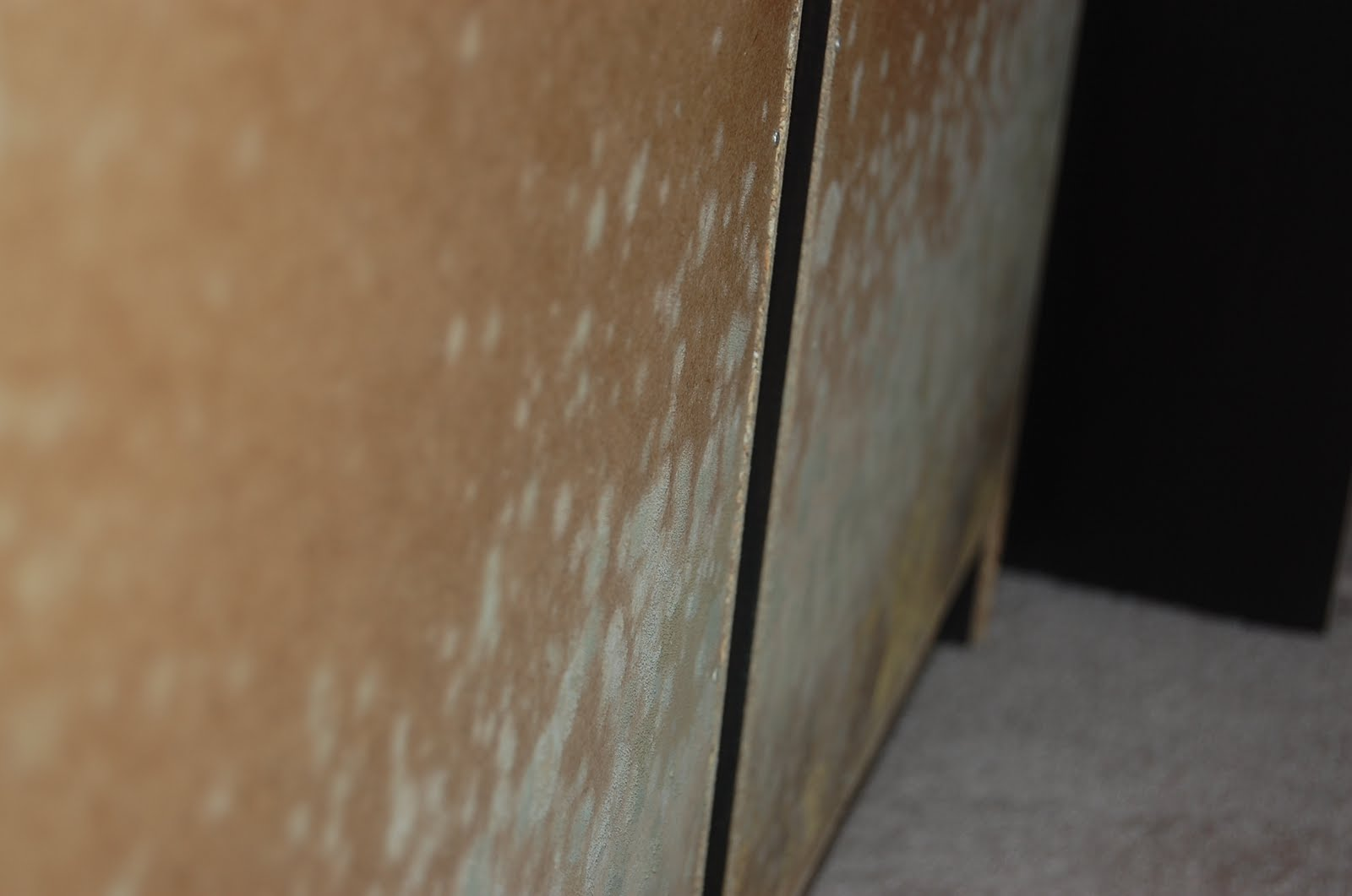 Mold Mold Affected Furniture