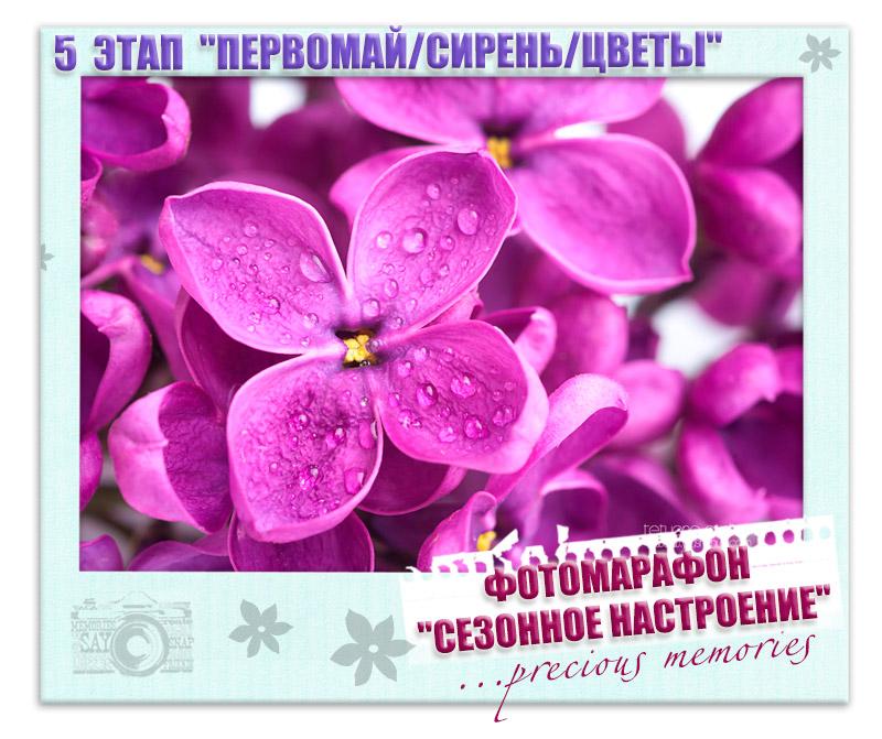 http://preciousmemories-challenge.blogspot.ru/2014/04/5.html