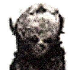 Momia extraterrestre encontrada en Egipto