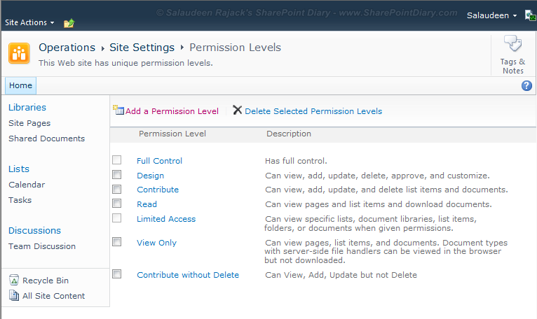 sharepoint 2010 custom permission level