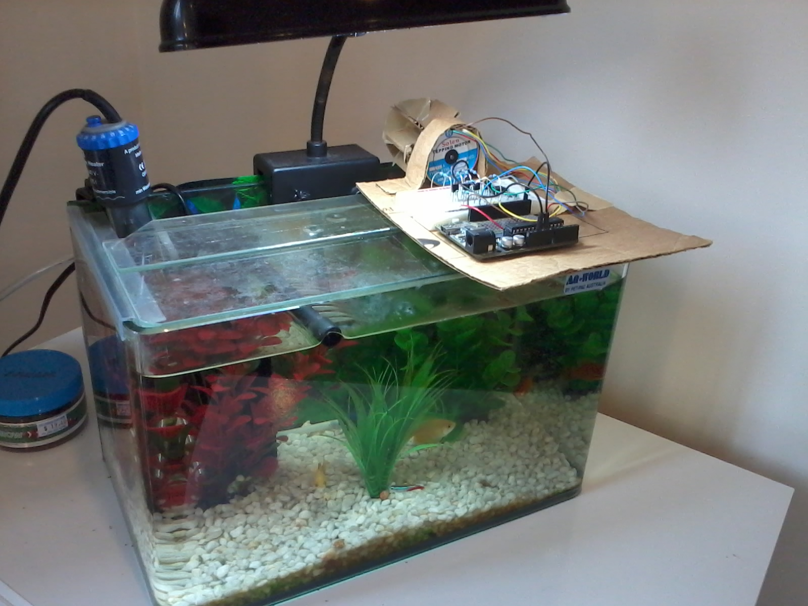 mate fish watch best feeder automatic auto pond