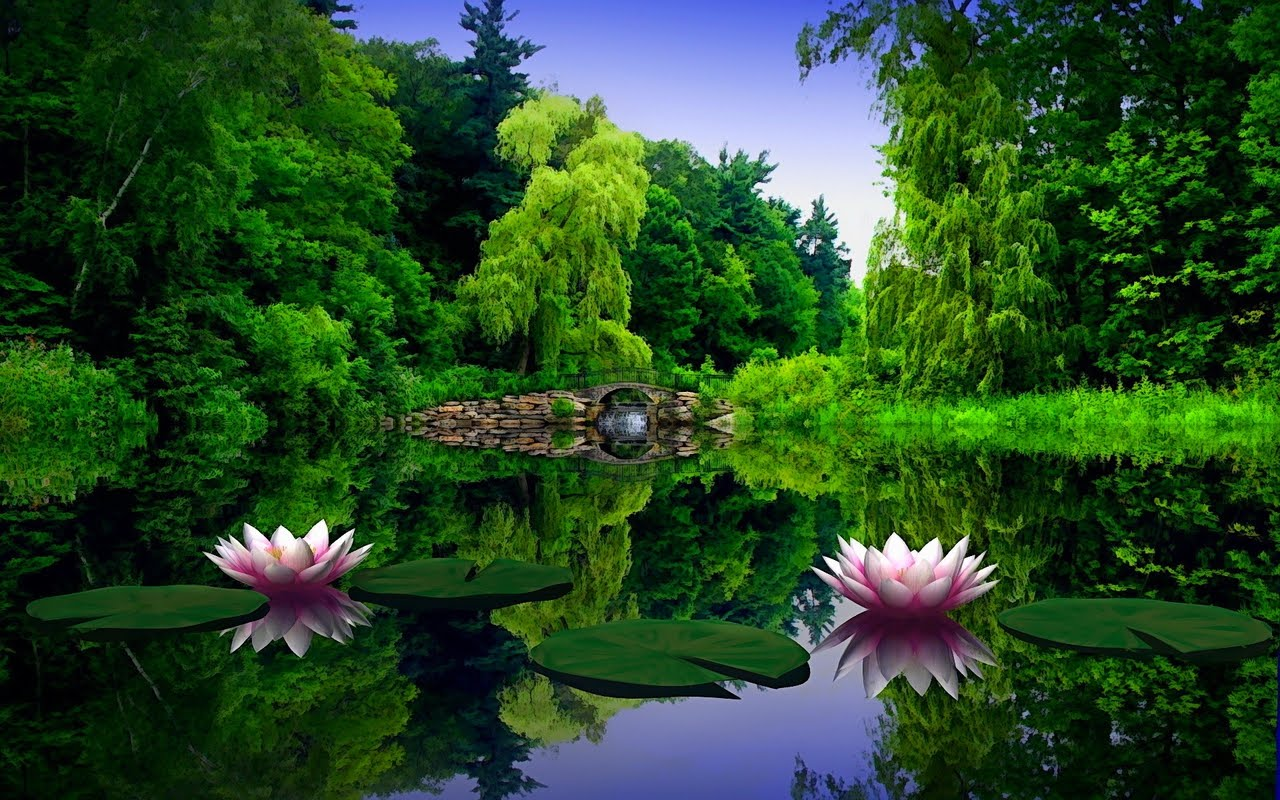 http://3.bp.blogspot.com/-jamULvbe9xQ/T1pRKUHlGCI/AAAAAAAAFDI/UfM5IC-N03k/s1600/612161-1280x800-This-is-a-real-spring.jpg