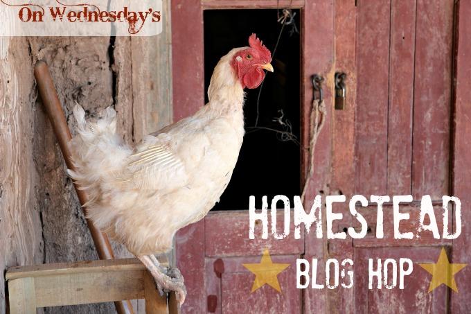 My Blog Hops