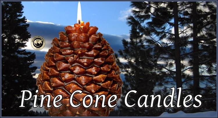 Scented PineCone Candles