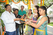 Padmavathi Art Productions new movie launch-thumbnail-6