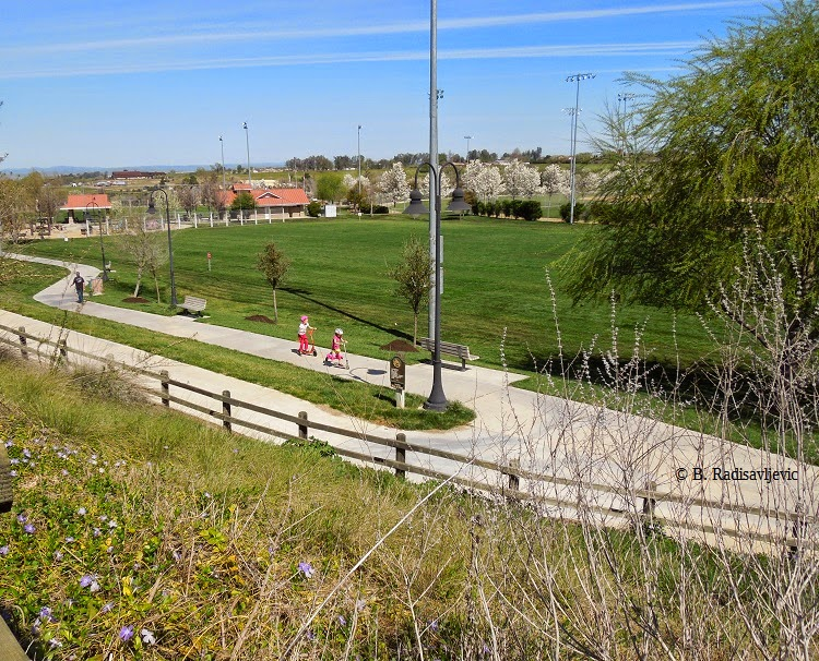 Barney Schwartz Park, Paso Robles, © B. Radisavljevic
