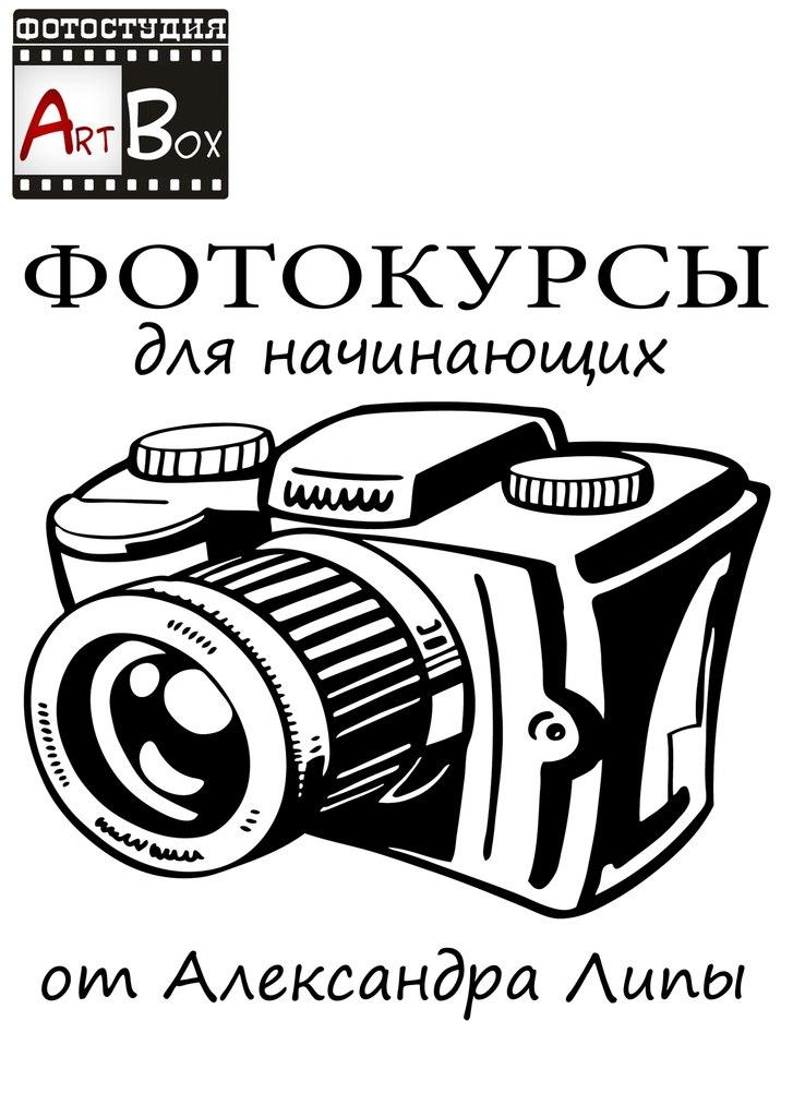 фотокурсы для начинающих: