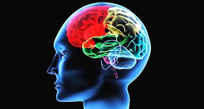 Cura para lesión cerebral