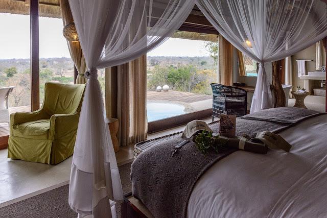 Leopard Hills Room