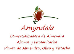 Amyndala Frutos Secos S.L.