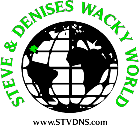 Steves & Denises Wacky World