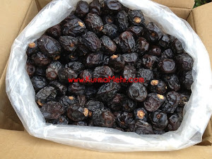 Quality Ajwa Dates - Madina - Latest Update - 19hb.April 2013