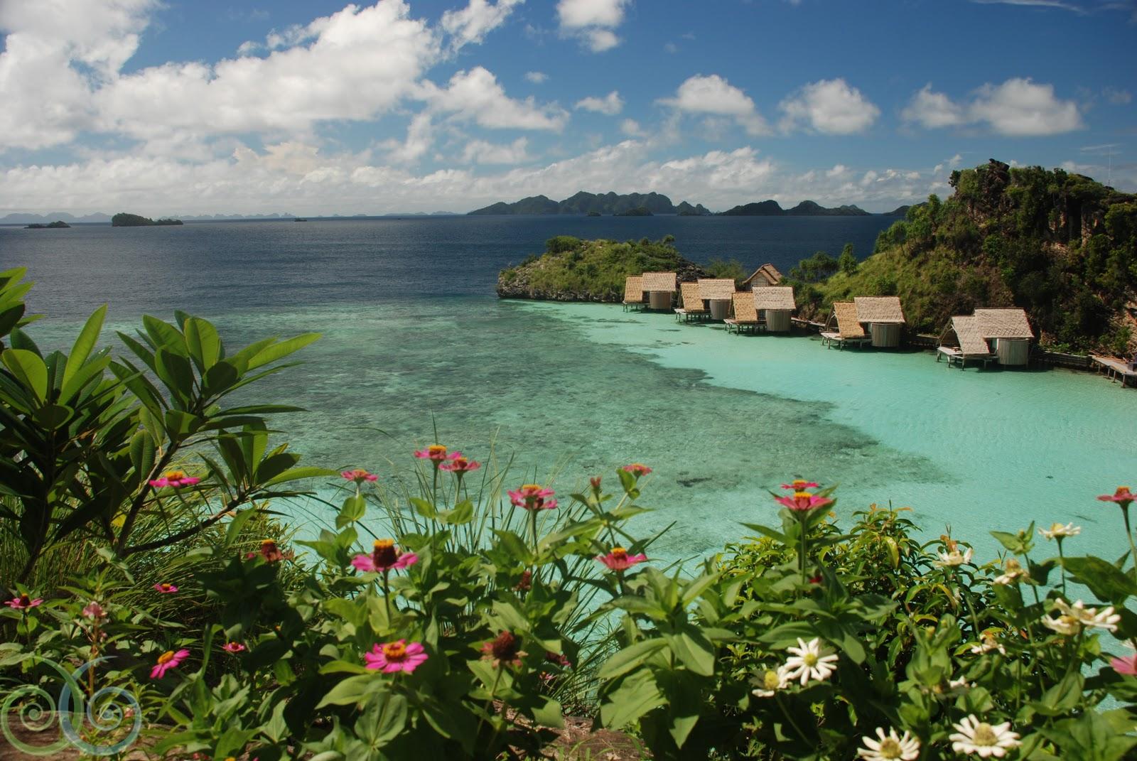 Raja ampat island indonesia raja alam indah - Dive resort raja ampat ...