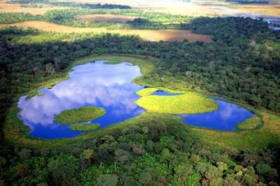 qual a melhor epoca para visitar Pantanal
