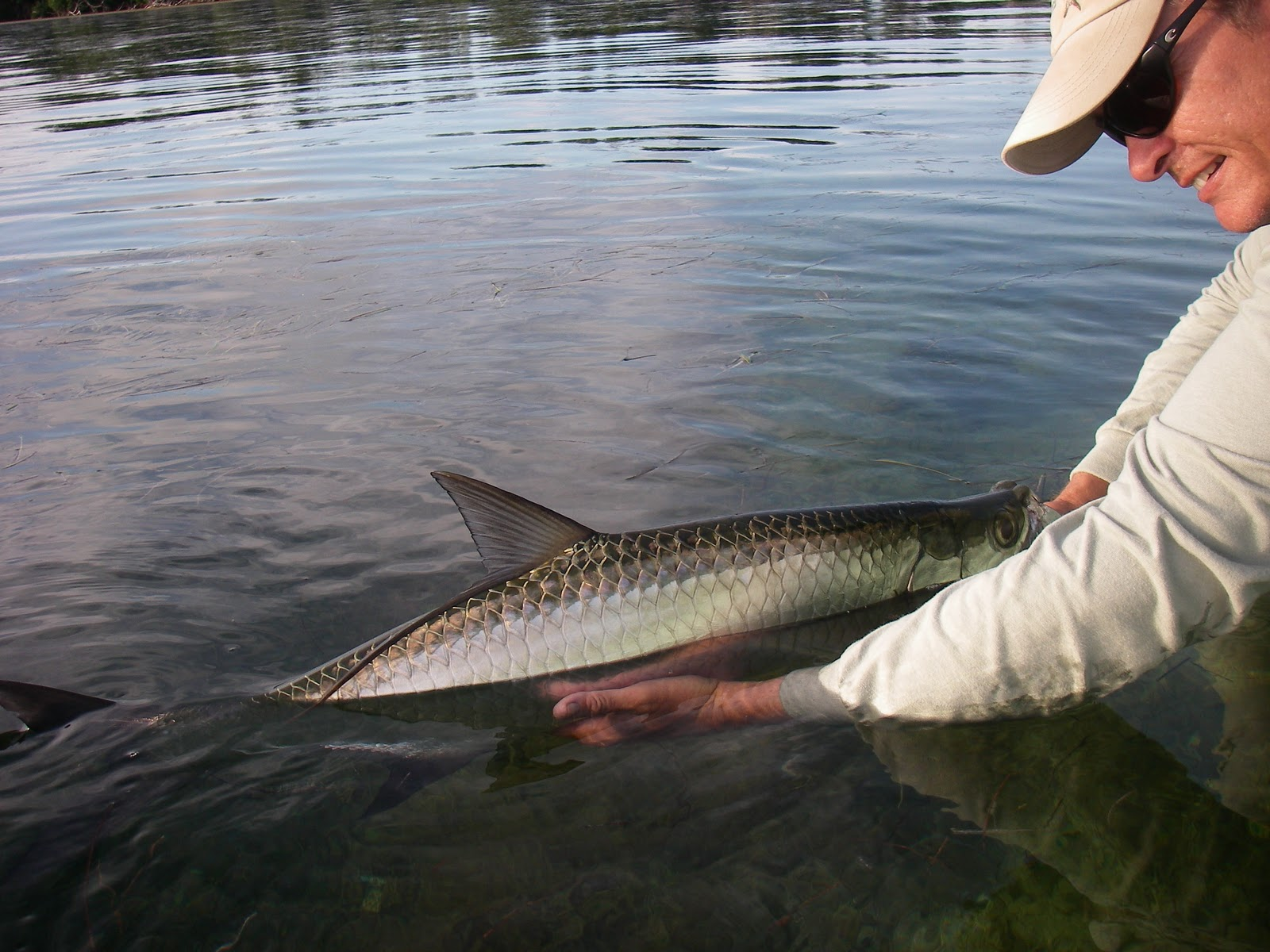 Sight fish charters florida keys flats fishing report for Florida tarpon fishing