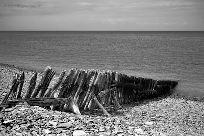 Black and White Beach Photography