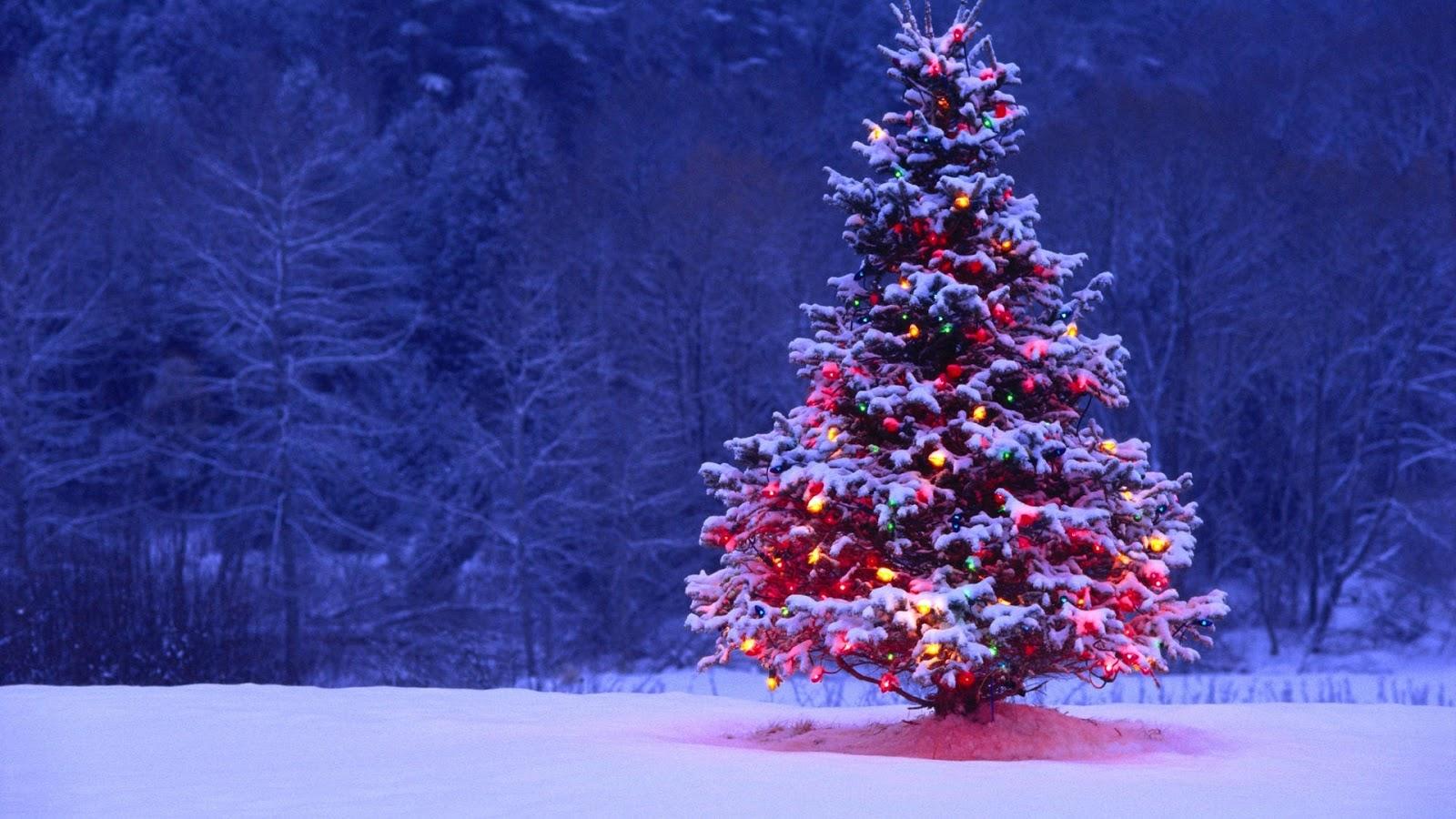 Free Wallpaper Christmas Tree