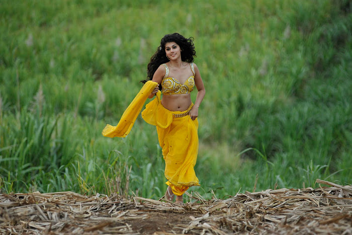 Mogudu Movie Actress Tapsee Spicy Navel Show Photos gallery pictures