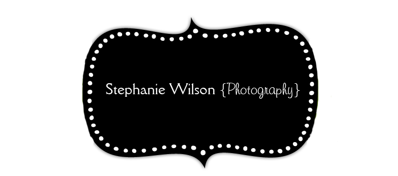 Stephanie Wilson Photography