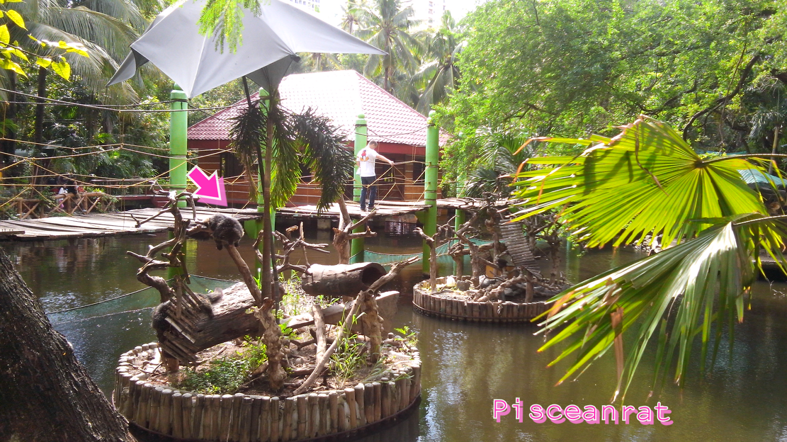 kinder zoo philippines