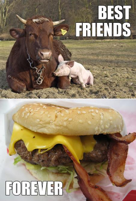 Las imagenes graciosas del día Bestfriends