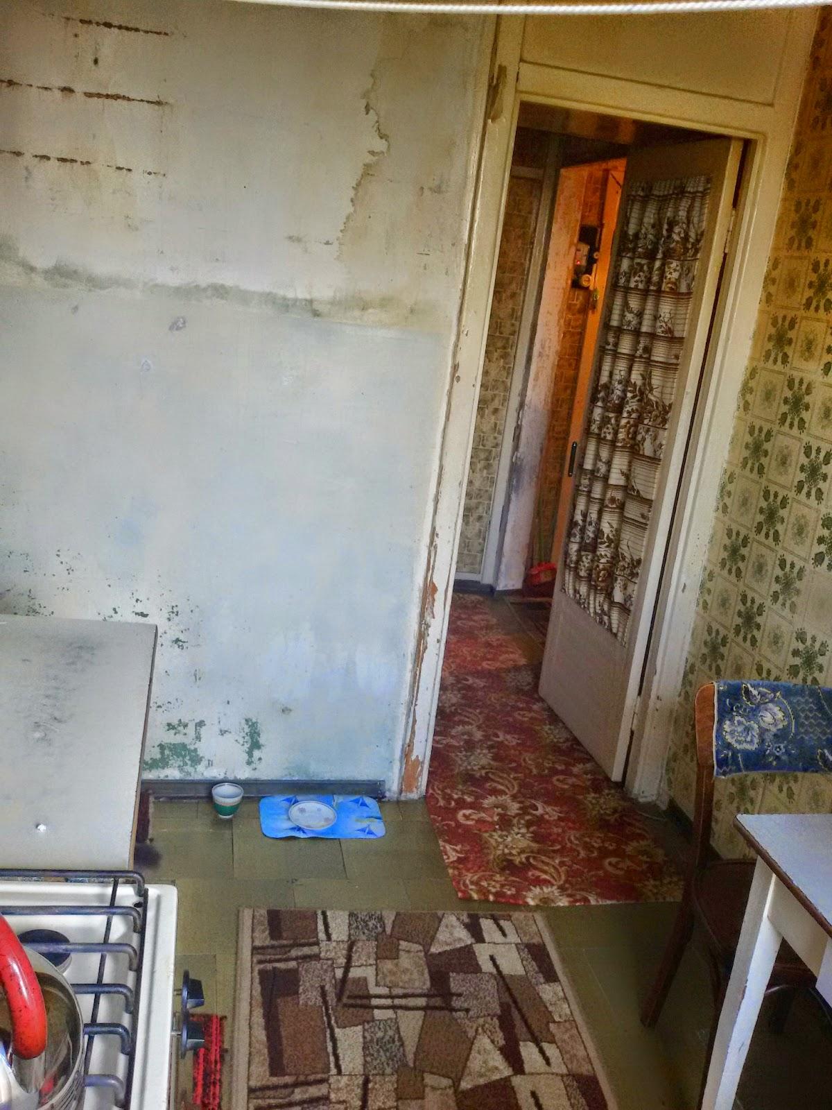 Продажа 2-комнатной квартиры 7/9 эт. дома по ул. Блюхера, 3