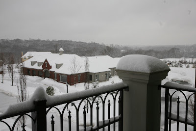 Overlooking the Haverford Reserve from the terrace of one of the Athertyn residences