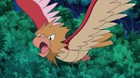 Pokemons de Kanto! Spearow_anime