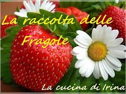 Raccolta Fragolosa