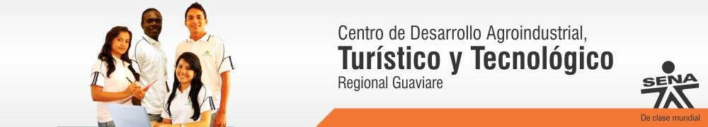 CDATTG REGIONAL GUAVIARE